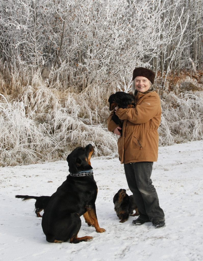 one winter lady, one rottweiler, 4 miniature dachshunds